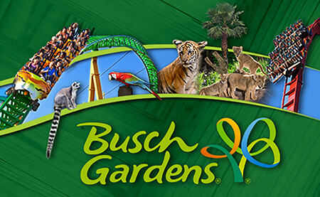 Busch Gardens Tampa Single Day with All Day Dine
