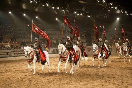 Medieval Times Dinner & Show Ticket