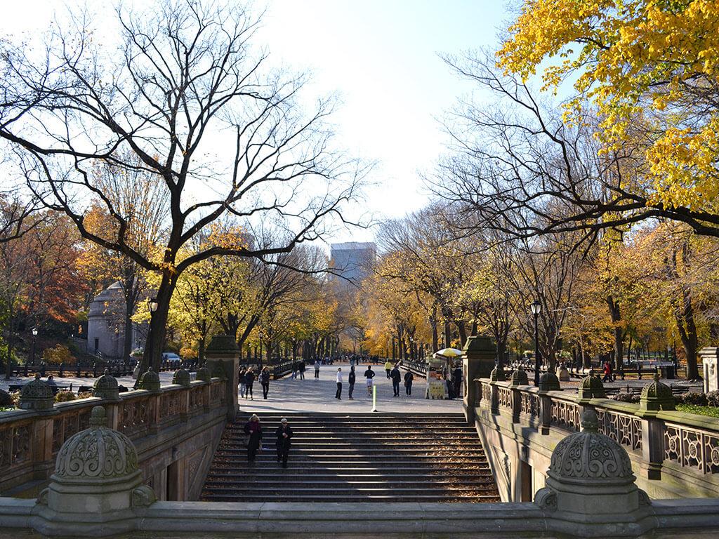 Bike Central Park Tour