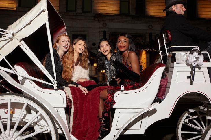 Central Park Horse & Carriage Tour: Long Ride