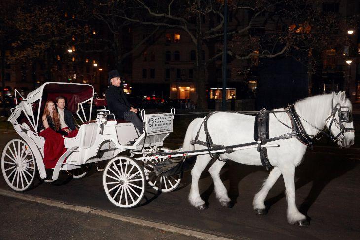 Central Park Horse & Carriage Tour: Short Ride