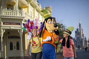 1-Day Disney Theme Park Ticket with Park Hopper® Plus Option