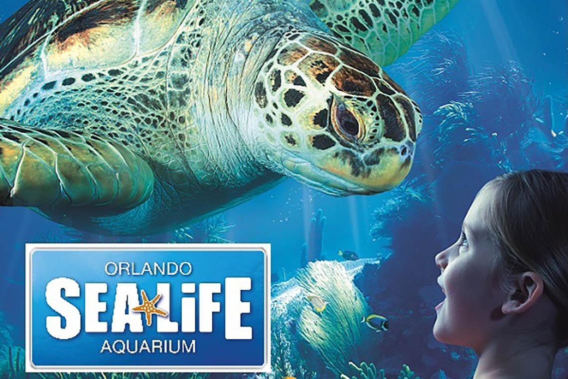 SEA LIFE Orlando: Admission