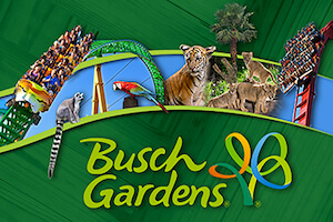 Busch Gardens Tampa Single Day + All Day Dine (PROMO)
