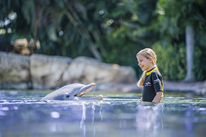 Discovery Cove Only - Day Resort Package (PROMO)
