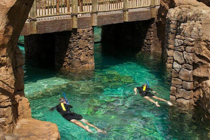 Discovery Cove Only - Day Resort with Dolphin Swim Package (BLACK FRIDAY SALE)