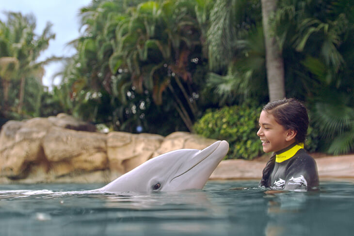 Discovery Cove Only - Day Resort with Dolphin Swim Package + FREE $50 Gift Card (PROMO FREE GIFT CARD)