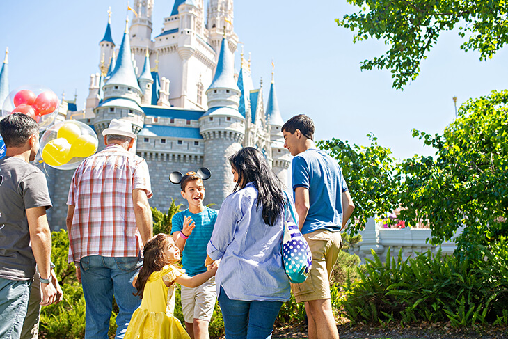 7-Day Disney Flexible Date Ticket with Park Hopper® Option