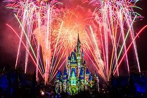 Disney After Hours at Magic Kingdom Ticket