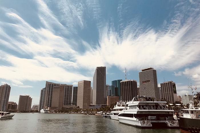 One Day Miami