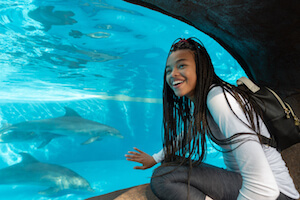 SeaWorld Orlando WEEKDAY Single Day + FREE All Day Dine (PROMO)