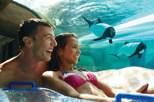 SeaWorld Parks: Two Park Ticket + 2 Meal Vouchers (PROMO)
