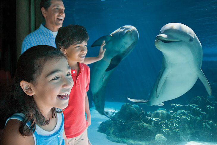 SeaWorld Parks: Two Park Ticket + 2 FREE Meal Vouchers (PROMO)
