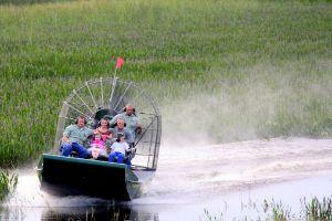 Wild Florida: 1-Hour Airboat Tour and Safari Park Combo