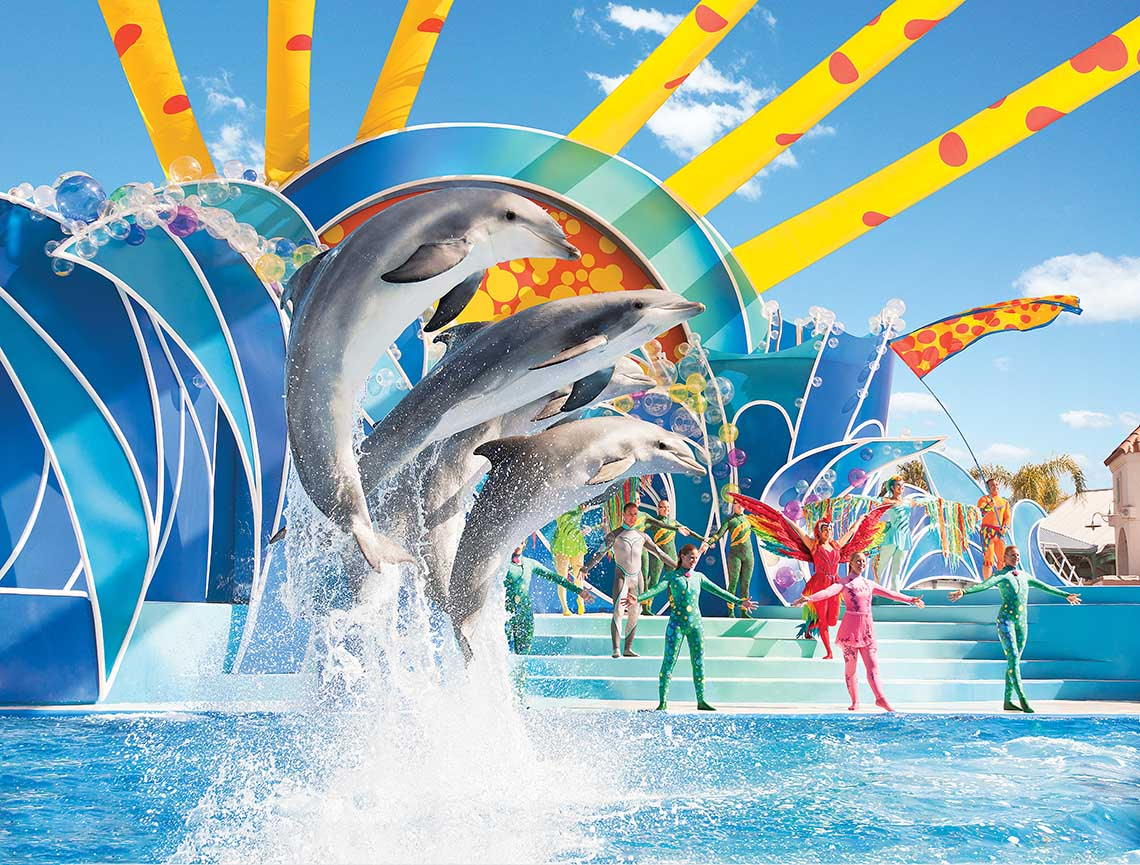 SeaWorld Orlando Single Day with All Day Dine