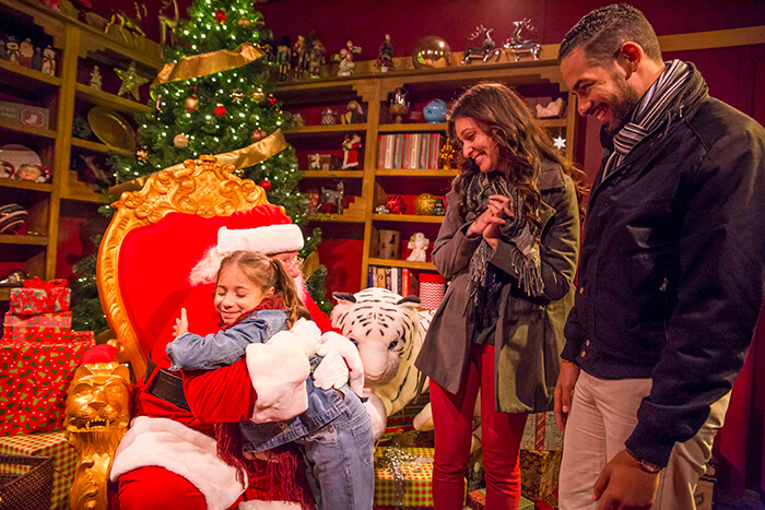 busch gardens williamsburg christmas town single day ticket details
