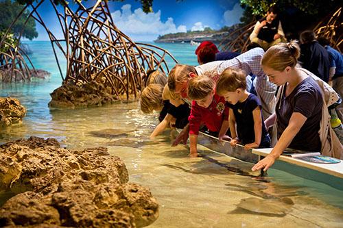 Boston aquarium for families